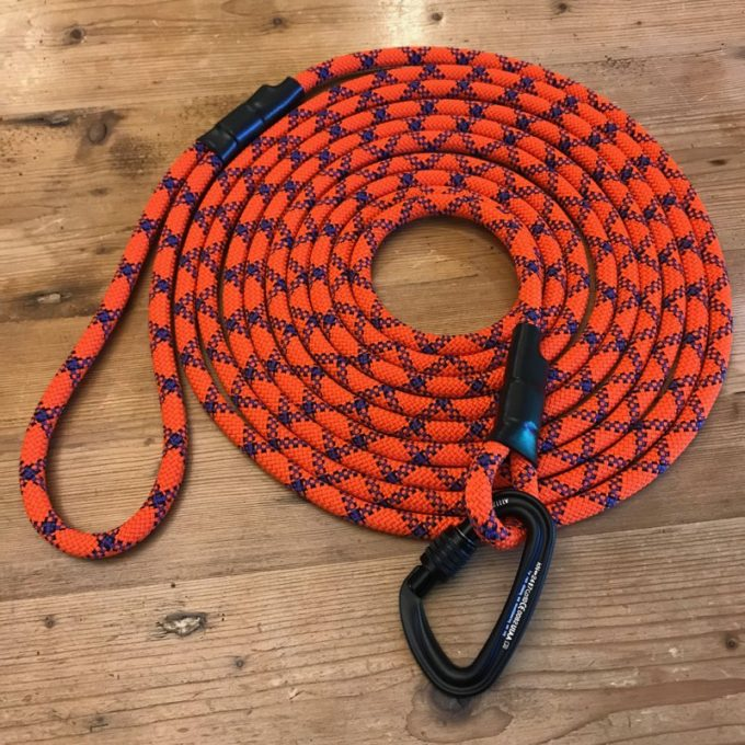 Carabiner Training Leash