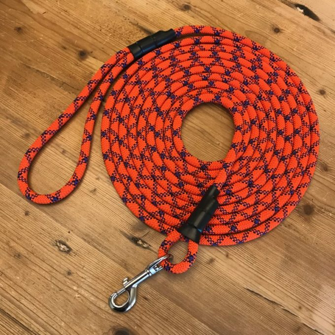 Clip Training Leash