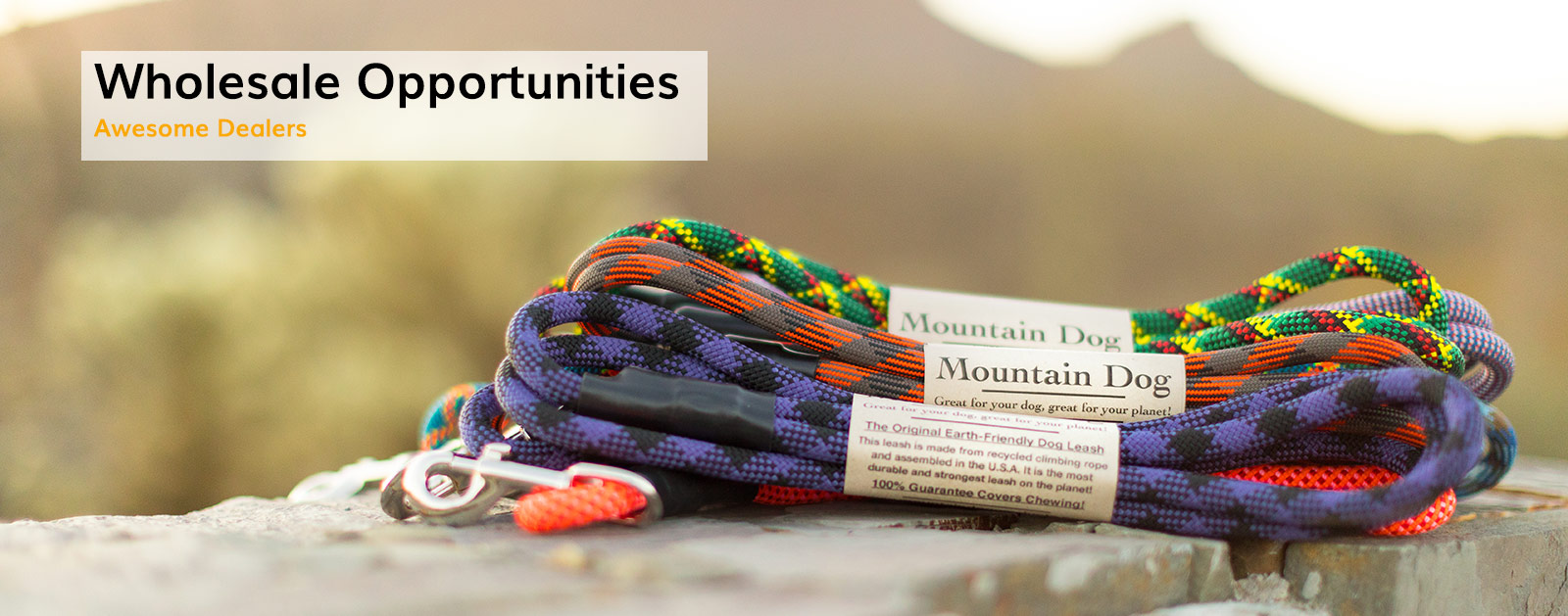 wholesale-opportunties-v1